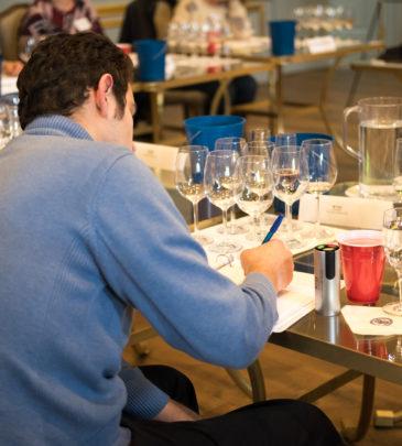 Wine Tasting Professional #120
