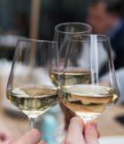 Wine Hospitality Fluency #103